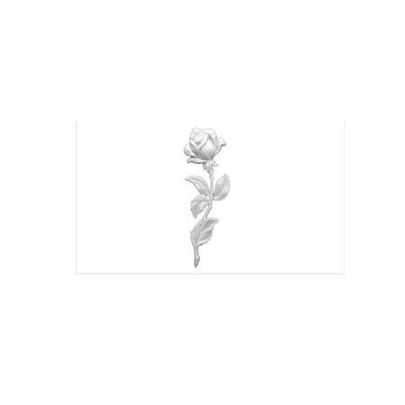 17. Róża duża
